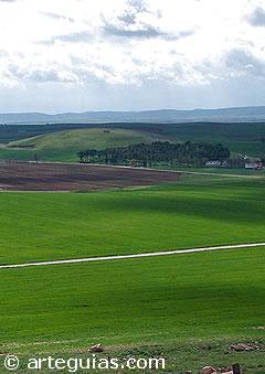 Lugar donde se desarrolló la batalla de Alarcos
