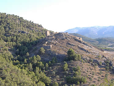 Castillo de Pliego
